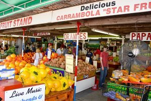 a plethora of tropical delights are available year-round at fruit stands in the Redland region