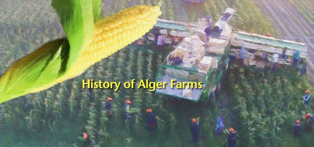 History of Alger Farms