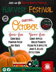 Harvest Festival at Burr's Berry Farm