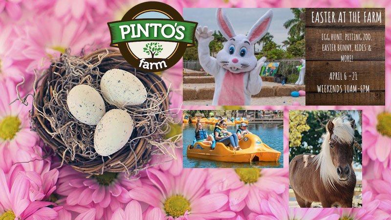 Easter Fun Day at Pinto Farm