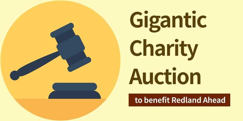 Gigantic Charity Auction at Redland School