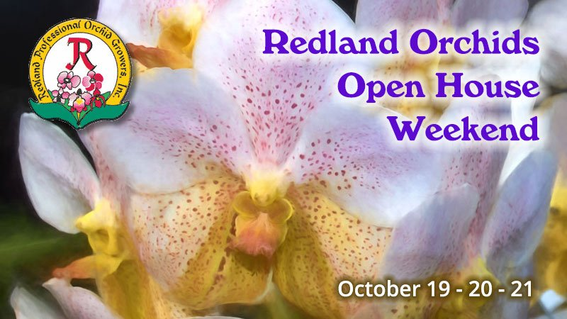 Redland Orchids Fall Open House Weekend