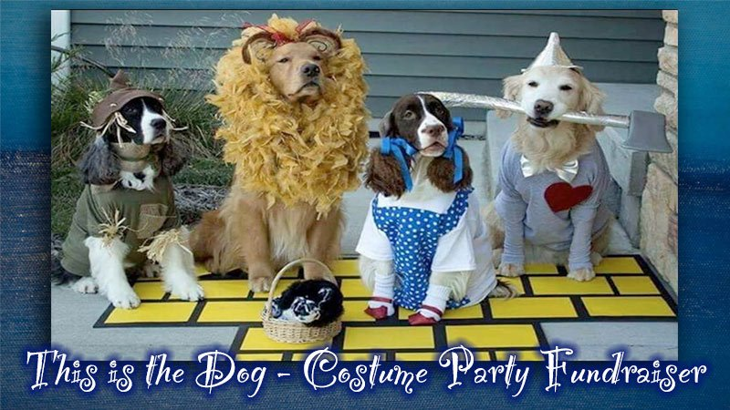 This is the Dog - Costume Party Fundraiser