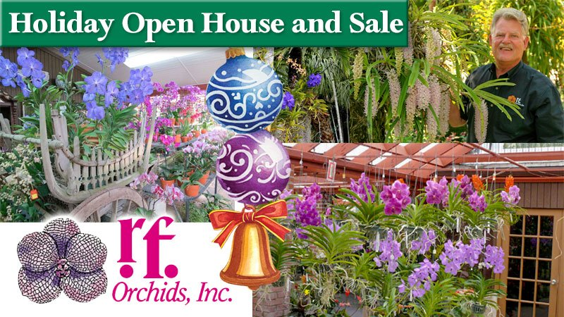 R. F. Orchids Holiday Open House and Sale