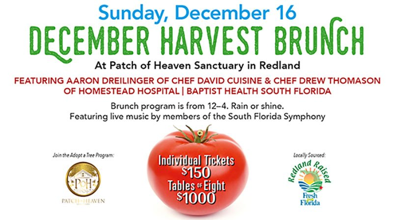 Taste Of Redland Locovore Culinary Series Brunch at Patch of Heaven Sanctuary