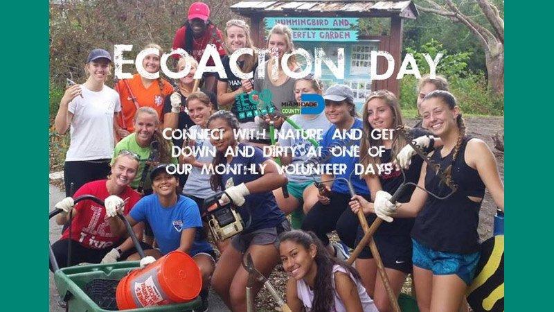 Volunteer EcoAction Day at Castellow Hammock Park