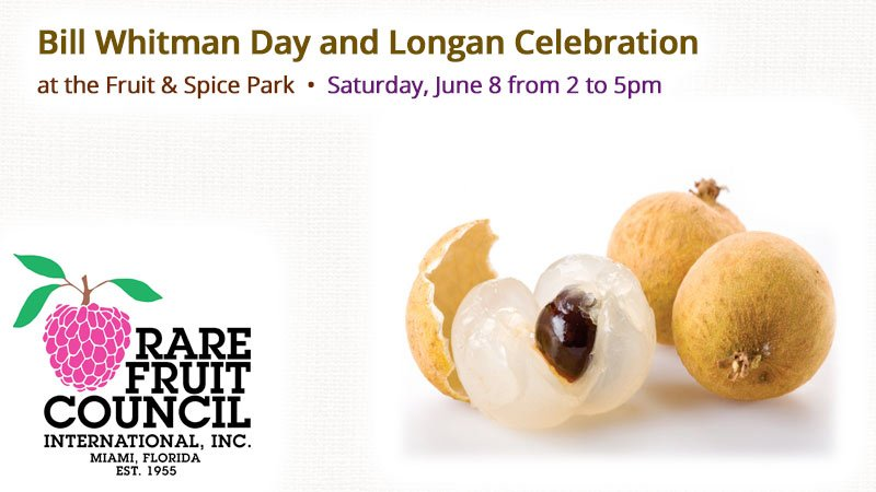 Rare Fruit Council International - Bill Whitman Day and Longan Celebration at the Fruit & Spice Park
